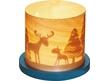 Lantern Winter Forest