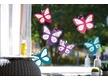 Window Butterflies