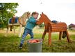 Wooden Pony