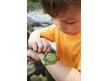 Wristwatch Prehistory Explorer